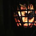 写真: 篝火