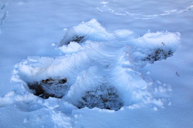 Snow angel...2