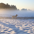 Photos: After the snowstorm...