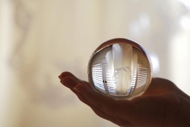 手の平に。。crystal ball