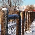 Photos: wood fence