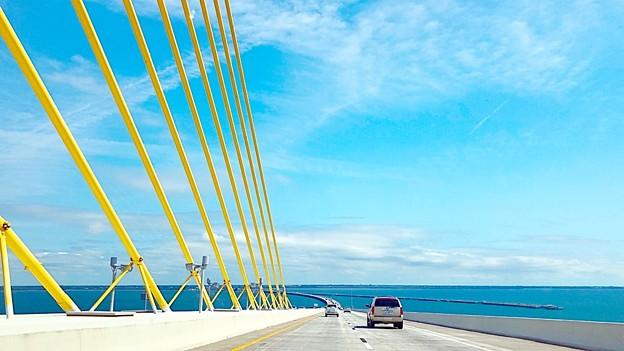 Photos: Florida Blue