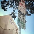 Photos: Parkingルール