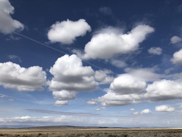 Photos: いろんな雲♪