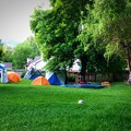Photos: お庭でキャンプ♪
