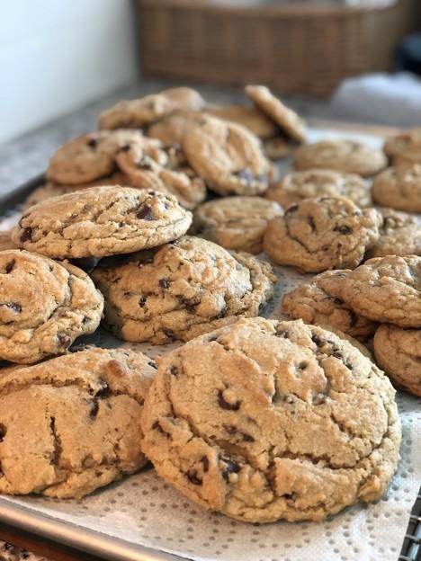 チョコチップクッキーはいかがですか~?