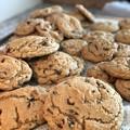 Photos: チョコチップクッキーはいかがですか~?