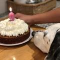 Photos: Happy Birthday BeeBee♪