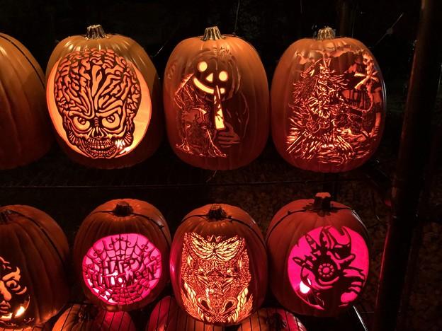 Halloween Night…4