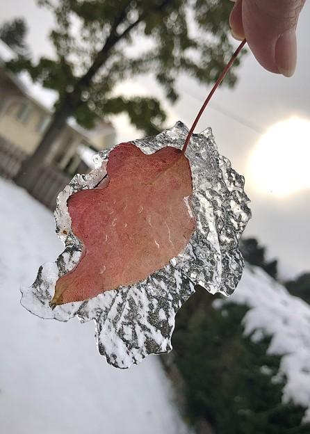 氷に包まれて。。