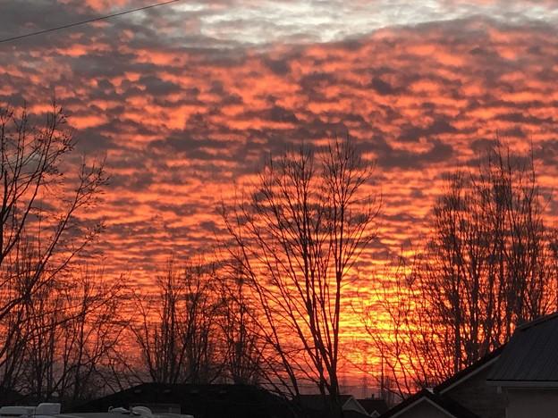 Photos: 月曜日の夕焼け。。2