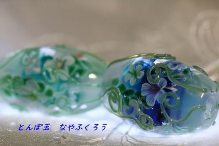 とんぼ玉 H30.8.27 1