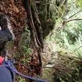 岩の裂け目をよじ登る