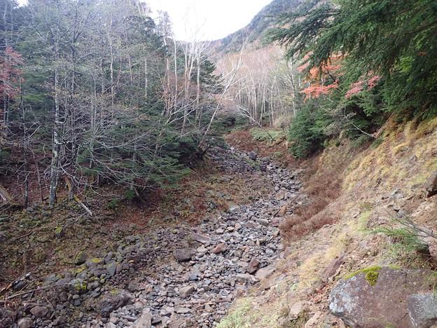 右手(左岸)の笹原の斜面を進む