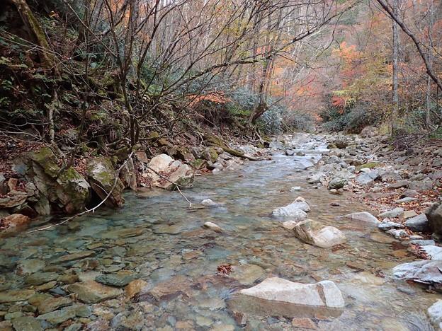穏やかな瀬と紅葉