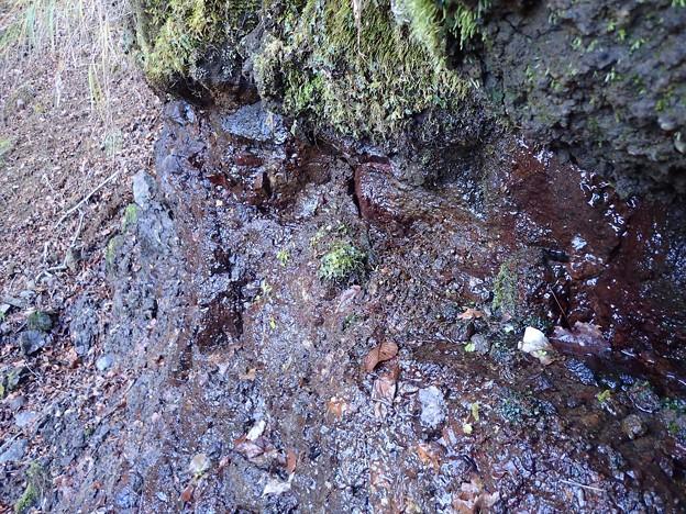 涸棚の下からにじみ出る水