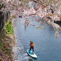Photos: 水上散歩