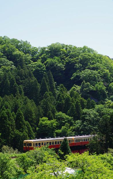 Photos: 山間をはしる