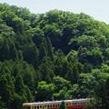 写真: 山間をはしる