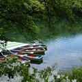 写真: 四尾連湖