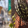 Photos: 東京下町レトロ