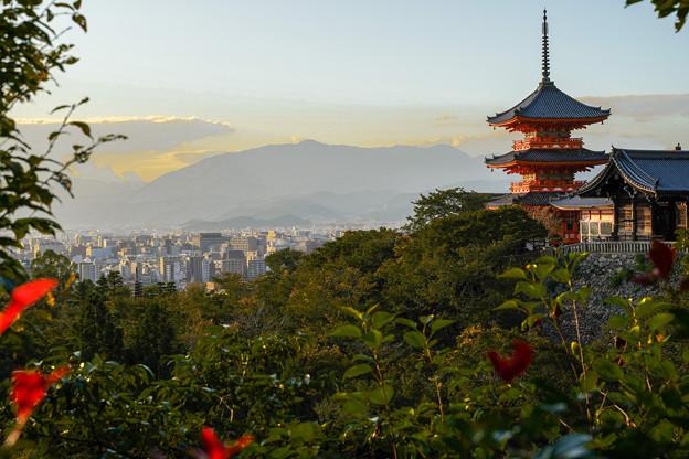 Photos: Go To 京都