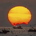 写真: 三陸沖の日の出