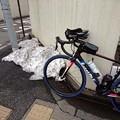 写真: 西東京市
