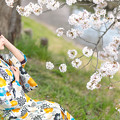 Photos: 咲羅レイン_20190407-7