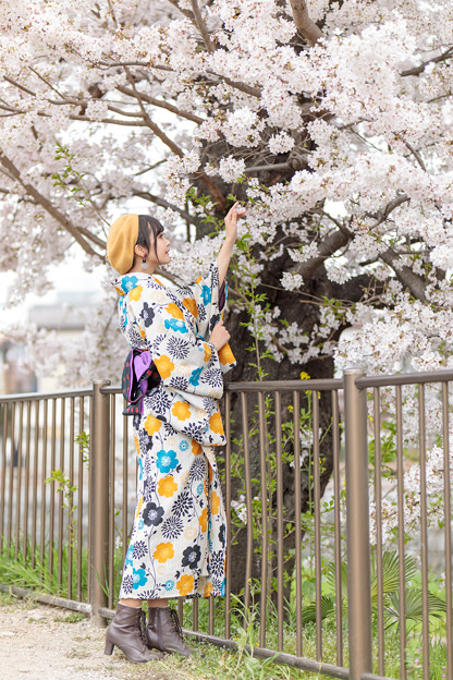 Photos: 咲羅レイン_20190407-24