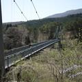 写真: 七ヶ宿町 やまびこ吊橋