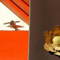写真: 雀踊り