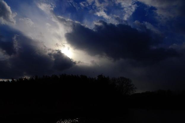 写真: 冬の日