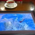 Photos: 喫茶店エスペランザに展示しました。