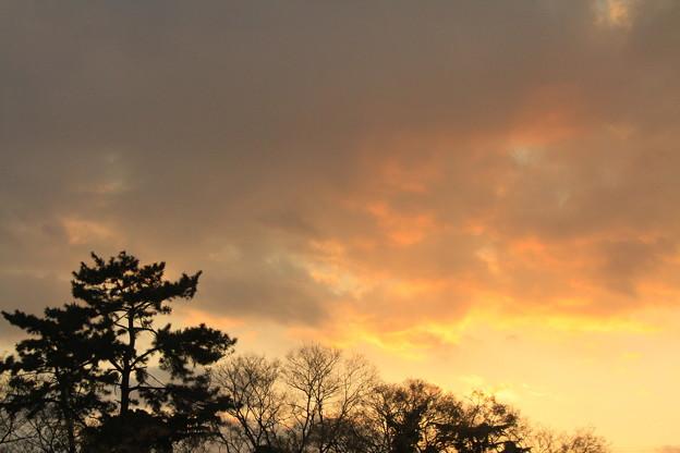 Photos: 萌える雲