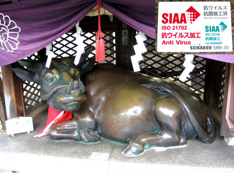 露天神社(お初天神)・撫で牛