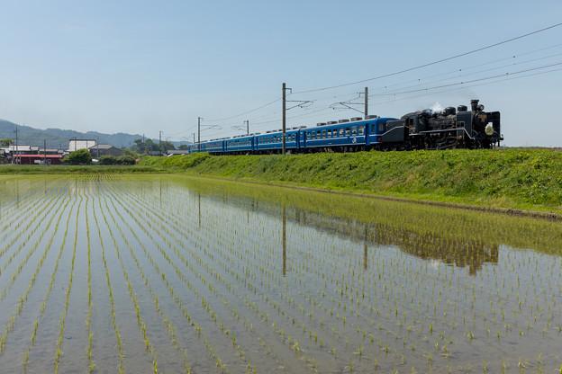 JR北陸本線 米原~坂田
