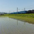 写真: JR北陸本線 米原~坂田