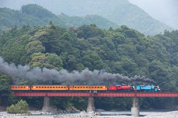 写真: 大井川鐵道 抜里~川根温泉笹間渡