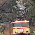 Photos: 大井川鐵道 神尾~五和