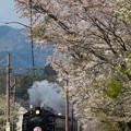 大井川鐵道 家山~大和田