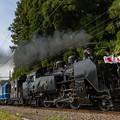 Photos: 東武鉄道鬼怒川線 東武ワールドスクウェア~鬼怒川温泉