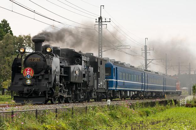 東武鉄道鬼怒川線 大谷向~大桑