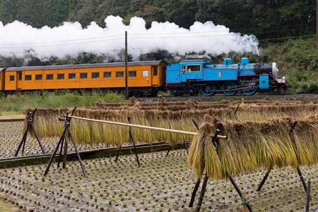 Photos: 大井川鐵道 福用~大和田