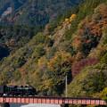 Photos: 大井川鐵道 崎平~千頭