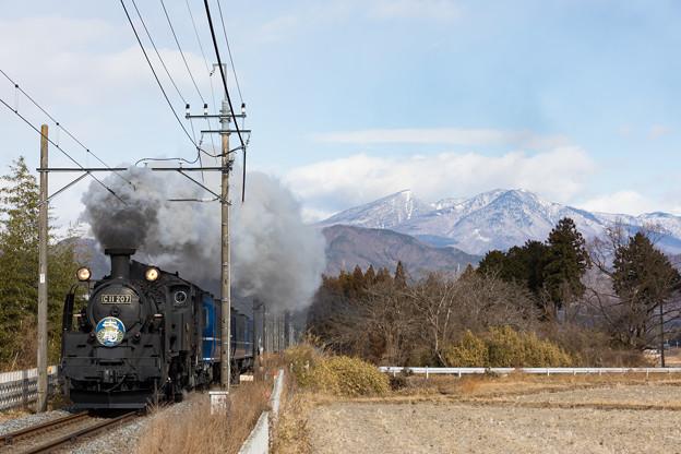 東武鉄道鬼怒川線 大桑~大谷向