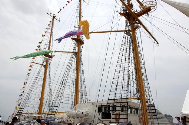 神戸開港150周年記念*みらいへ5