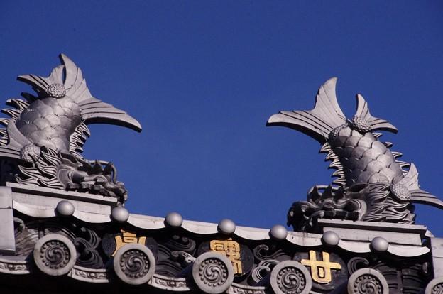 護国寺 9