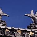 写真: 護国寺 9