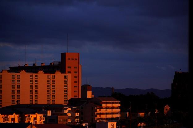 写真: 夕闇2